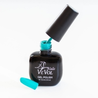 VeVol-Nails Gel Polish №041